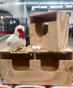 The Pet Place - Poultry